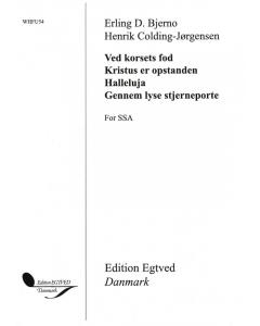 4 satser for SSA (Erling D. Bjerno, Henrik Colding-Jørgensen)